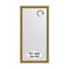 Зеркало в багетной раме (52х102 см) EVOFORM BY 1052