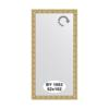 Зеркало в багетной раме (52х102 см) EVOFORM BY 1053